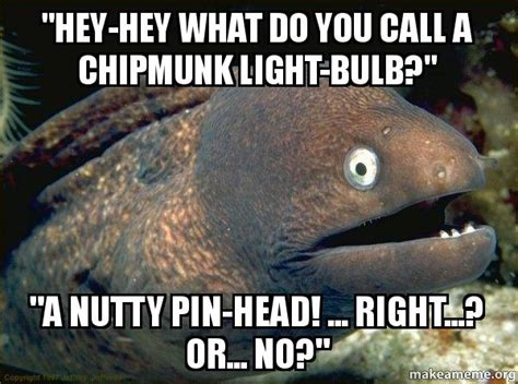 who do you call when a light is out quot hey hey what do you call a chipmunk light bulb quot quot a nutty
