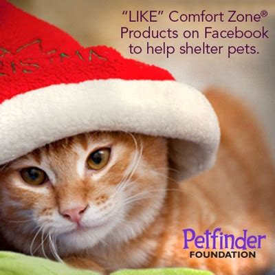 help comfort help comfort zone 174 products bring peace joy and comfort
