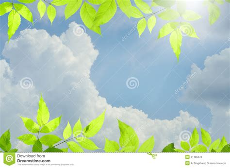 background design of nature nature green background with over blue sky stock photo