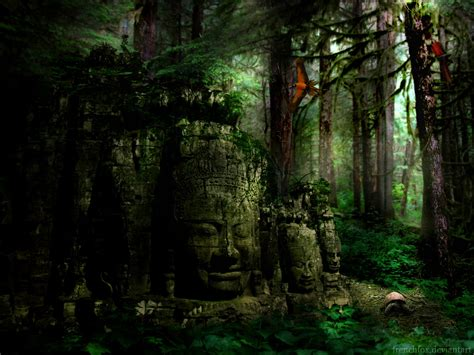 Rainforest Wall Murals ancient forest by frenchfox on deviantart