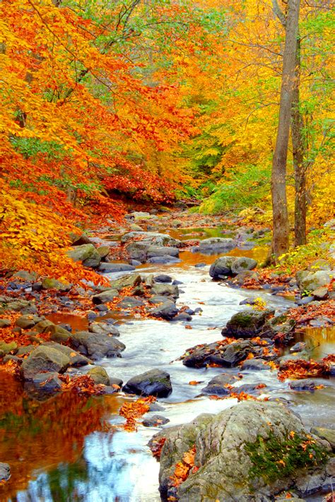 fall autumn elevation of n middletown rd pearl river ny usa maplogs