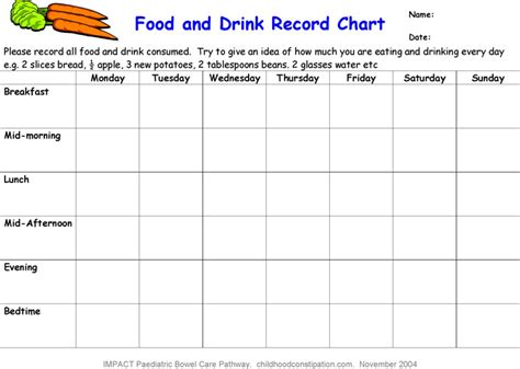 food record chart template food log template free premium templates
