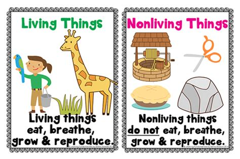 living things non living things living nonliving mini science unit for preschool