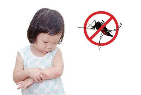 Lotion Serai Anak Anak by Cara Mengusir Nyamuk Yang Paling Aman Untuk Bayi