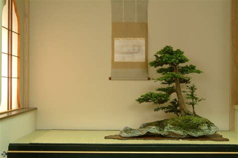 bonsai wallpapers bonsai empire