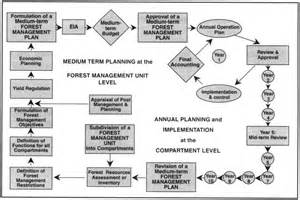 tree management plan template 3 guidelines for forest management planning