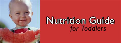 Nutrition Guide For Toddlers