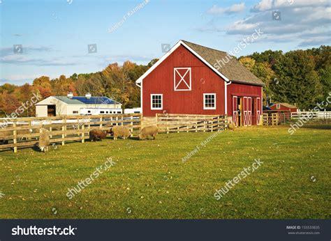 scheunenausbau bilder barn farm animals this scenic stock photo 155533835