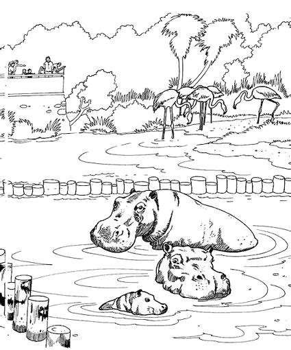 zoo coloring pages printable printable zoo coloring pages colouring for kids