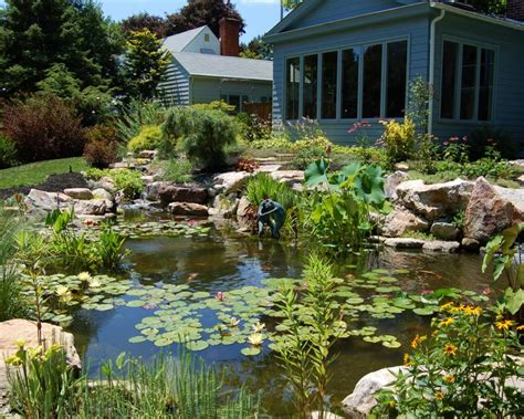 backyard ecosystem pond contractor design installation bucks montgomery