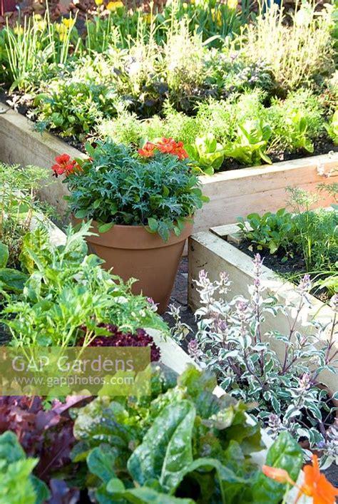 Gap Gardens Vegetable Garden With Raised Beds Places Vegetable Garden Silver