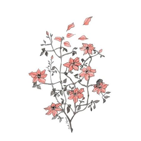 wallpaper flower draw i m screwed love pinterest beautiful flower prints