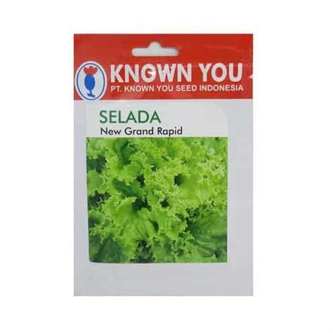 jual benih selada new grand rapid 5 gram known you seed bibit