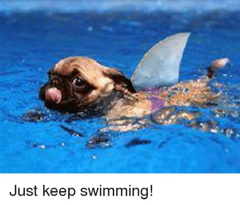 Just Keep Swimming Meme - 25 best memes about just keep swimming just keep
