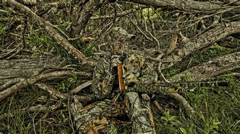 how to a to hunt how to hide and use camouflage activity