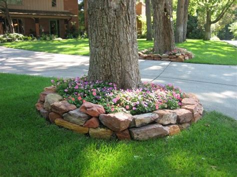 Landscaping Ideas Around Trees Pinterest