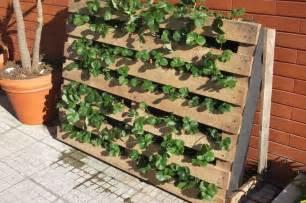 pallet used as strawberries garden 1001 gardens