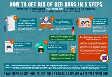 inspect spot   rid  bedbugs potentash