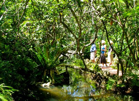 Pinecrest Gardens Florida Hikes Pinecrest Botanical Gardens
