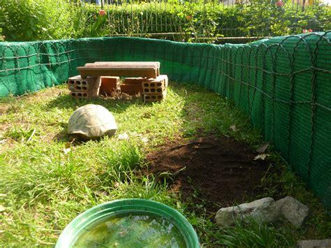 gabbie per tartarughe di terra recinto tartarughe da terra