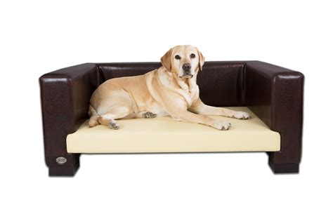 dogs couch best dog sofa beds