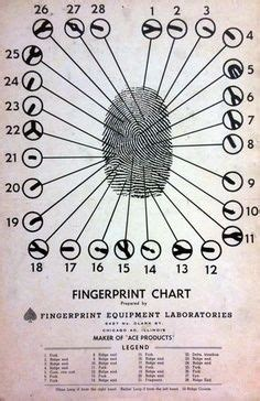 pattern evidence in forensic science 2192 best images about craft ideas on pinterest sheet