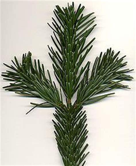 durchschnittliche hauptschlafzimmer größe 1000 images about oh tannenbaum wie gr 252 n sind deine