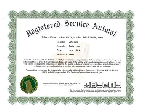 Information On Emotional Support Dog Certificate Dog Service Animal Certificate Template