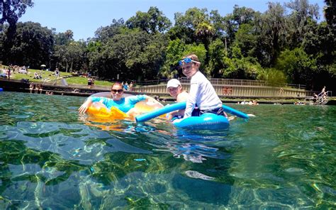 Wekiva Springs Detox by 5 Things To Do At Wekiva Springs State Park Shareorlando