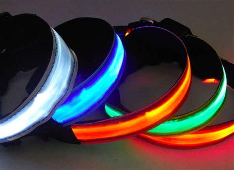 led leash led leash collar set