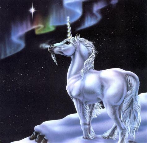 imagenes de unicornios frases de amor unicornio mirando la aurora boreal imagenes y carteles