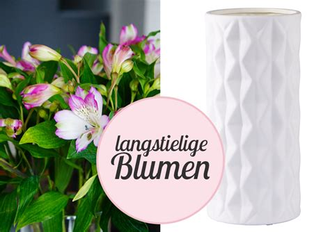 Langstielige Blumen by Der Blumen Vasen Guide Passende Vasen Kaufen