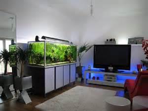 Modern Aquarium improve your home with modern fish tank