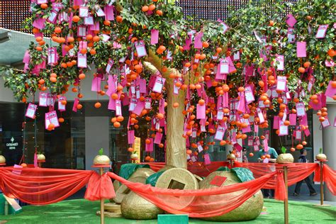new year wishing tree this new year let s not forget about the less