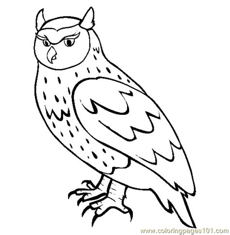 Pictures Of Owls To Color by Owl Coloring Page Free Owl Coloring Pages