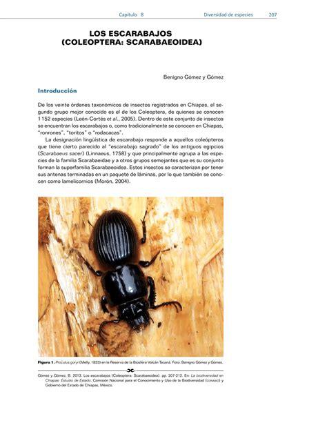 la leyenda de los escarabajos edition books los escarabajos de chiapas pdf available