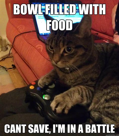 Cat Meme Images - gamer cat meme www pixshark com images galleries with