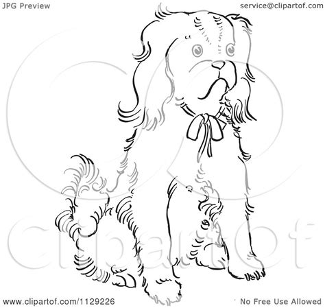 coloring pages of cavalier king charles spaniels cartoon clipart of an outlined cavalier king charles