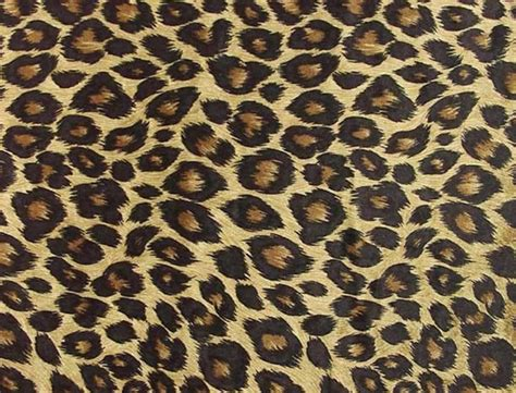print a wallpaper cheetah backgrounds image wallpaper cave