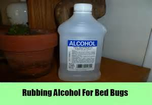 Can Rubbing Alcohol Kill Bed Bugs 7 Home Remedies For Bed Bugs Natural Treatments Amp Cures