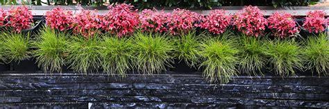 landscape design paving vertical wall gardens melbourne