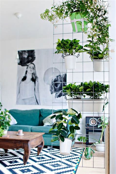 plant room divider 15 natural plant wall ideas for room dividers house