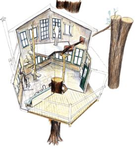 Cool Tree House Plans Learn How To Build A Tree House Treehouse Floor Plans 2 Story