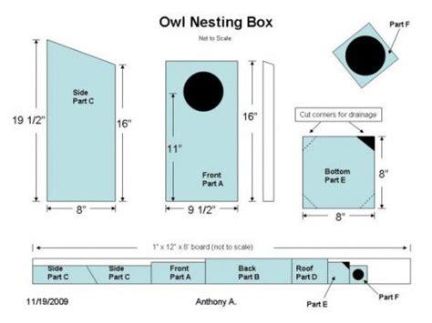 screech owl house plans screech owl house plans how to build a screech owl box