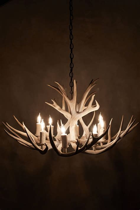 Chandelier Antler House And Home Anthropologie