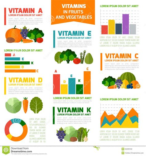 vitamin c vegetables names fruits and vegetables vitamins infographics stock vector