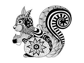 zentangle squirrel by bimdeedee animals coloring pages