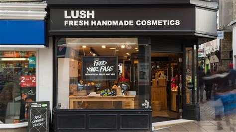 Lush Fresh Handmade Cosmetics Coupon Codes - mastercard careers whitelabel mpos solution paynear mpay