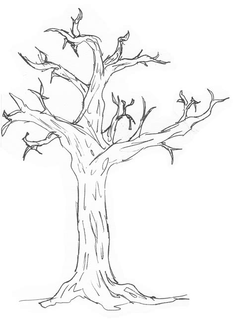 simple tree drawing simple tree image cliparts co
