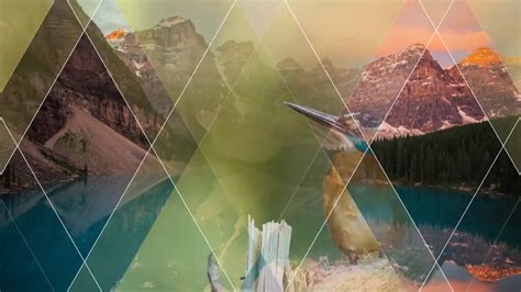transitions after effects templates motion array